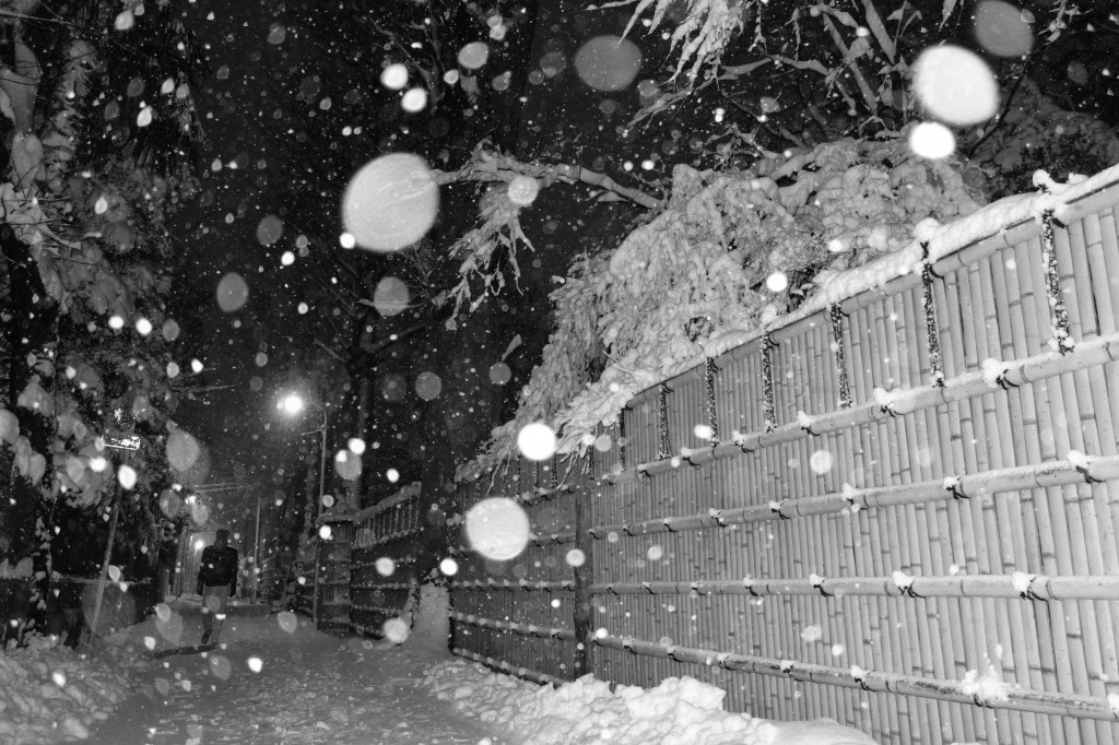 かきねのまがり角@雪の日
