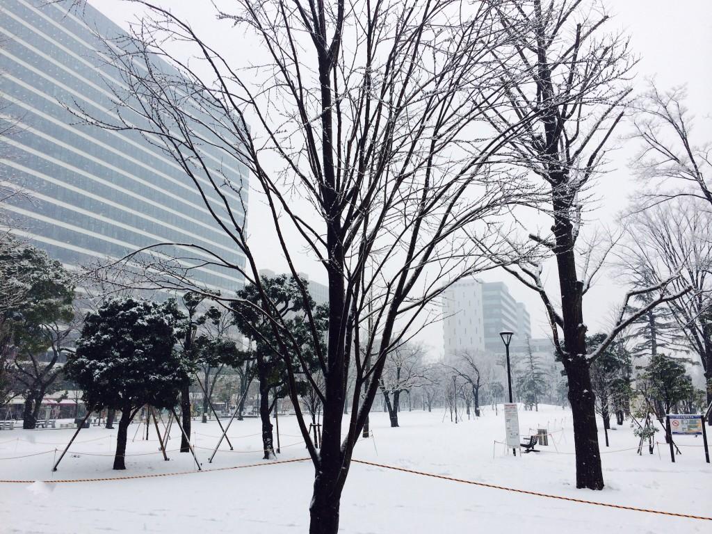 雪化粧の中野セントラルパーク