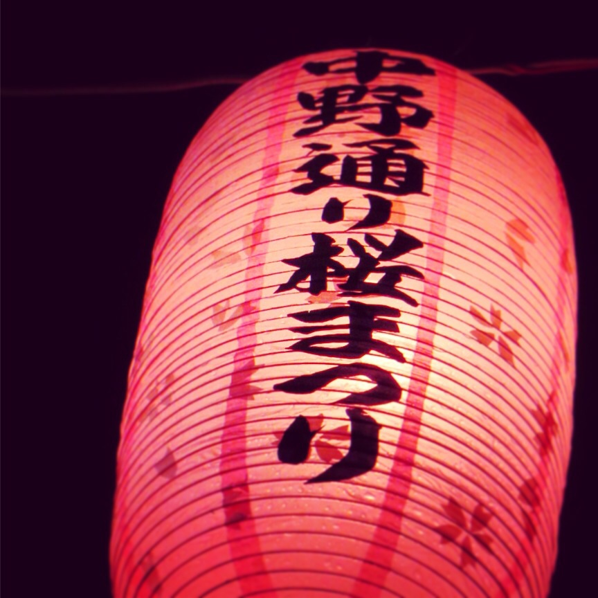 夜桜とともに