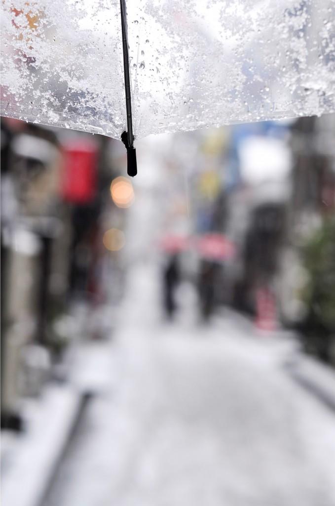 雪のお陰で‥